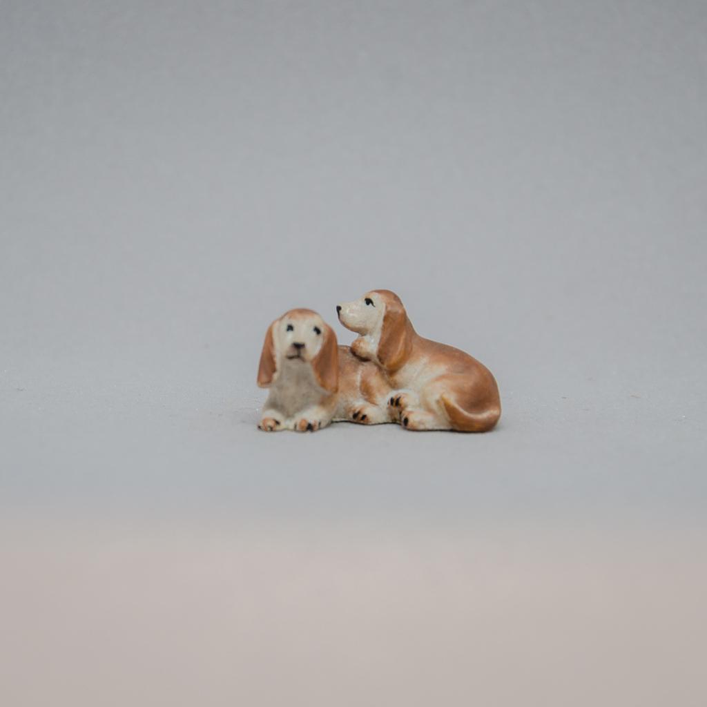 Dackelhunde